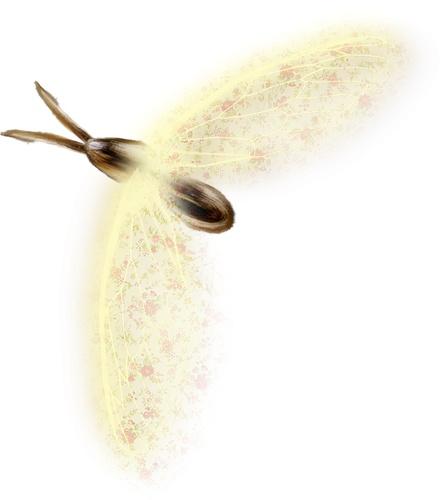 скрап_клипарт — «NLD Insect 3.png» на Яндекс.Фотках