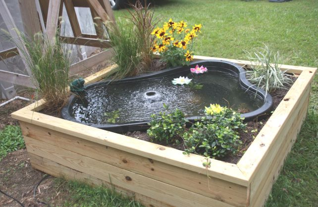 """If you don't want to dig that 'big ole hole' in the backyard......make a """"Pond Box""""!!  Side bonus, the dogs might not be in it as much!"""