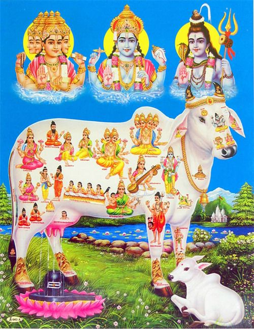 from top left: Brahma, Vishnu, Shiva    Nandi the sacred cow.