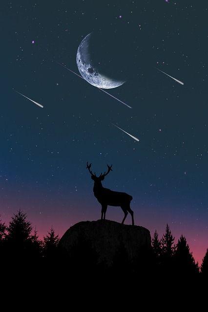 Free Image on Pixabay - Moon, Sky, Nature, Dusk, Sun | Free