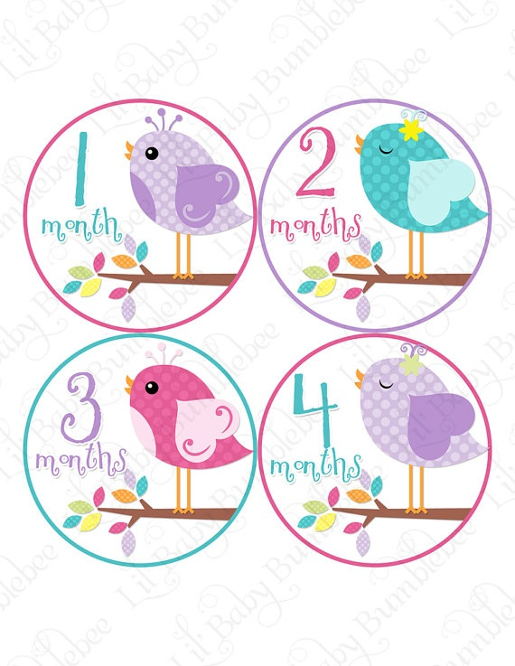 STICKERS for baby monthly age photos! fits perfectly on onesies/tees. great baby shower gift idea :)