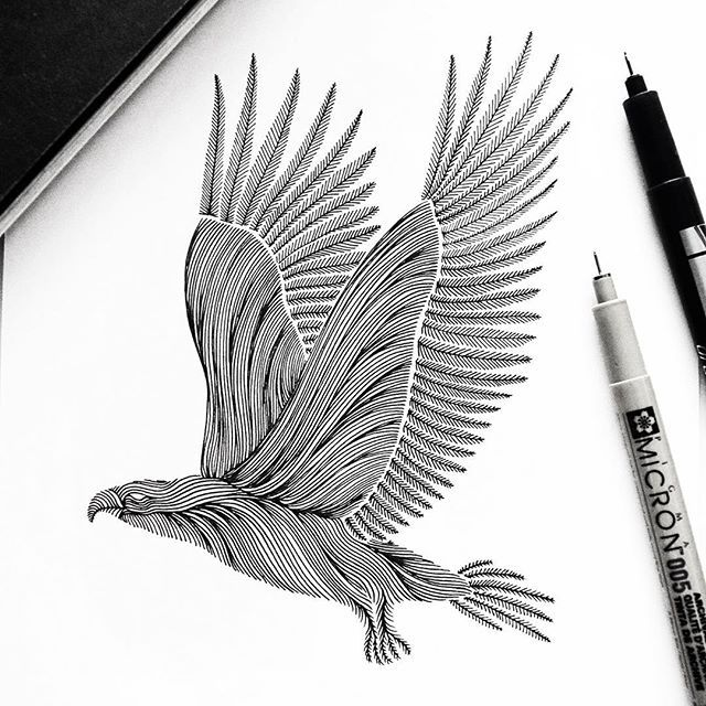 """Animal Lines """"Eagle"""" // Eagles are very large and powerfully built birds of prey, with heavy heads and beaks. There are a couple of eagle species, this one is based on the """"bald eagle"""""""
