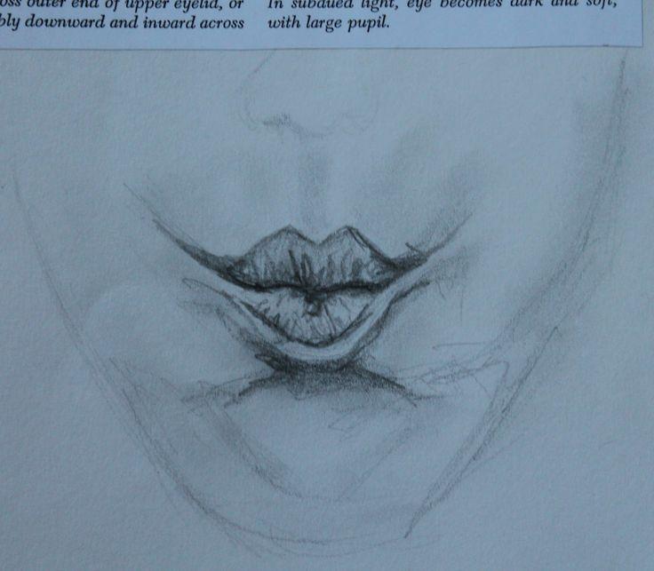 graphite study of lips