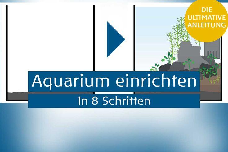 die besten 25 aquarium einrichten ideen auf pinterest aquarien aquarium und nano aquarium. Black Bedroom Furniture Sets. Home Design Ideas