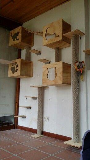 Espacio vertical para gatos