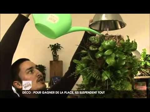 Les suspensions végétales
