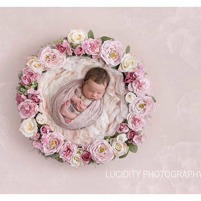 Digital background digital backdrop digital nest digital prop newborn prop composite backdrop flower wreath pink floral nest