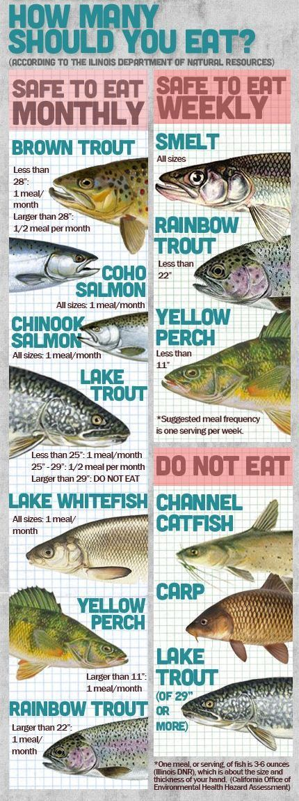 Types of white fish to eat for Fish types to eat