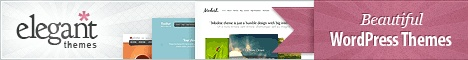 Seasons WordPress Theme is an elegant WP theme you can purchase it from WPZoom