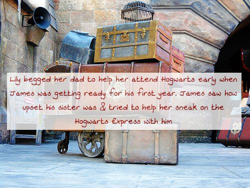 Lily begged her dad to help her attend Hogwarts early when James was getting ready for his first year. James saw how upset his sister was & tried to help her sneak on the Hogwarts Express with...