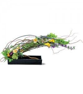 Curva Clemente - sauce rizado abraza flores ingeniosas, creando un arreglo impresionante con un diseño elegante, horizontal.  Una excelente opción para el hogar o la oficina.