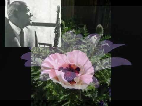 ▶ Sidney Bechet Petite Fleur - YouTube l Childhood Memories