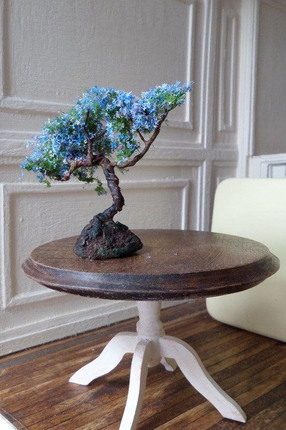 Miniature Jacaranda Bonsai Miniature Bonsai And Etsy