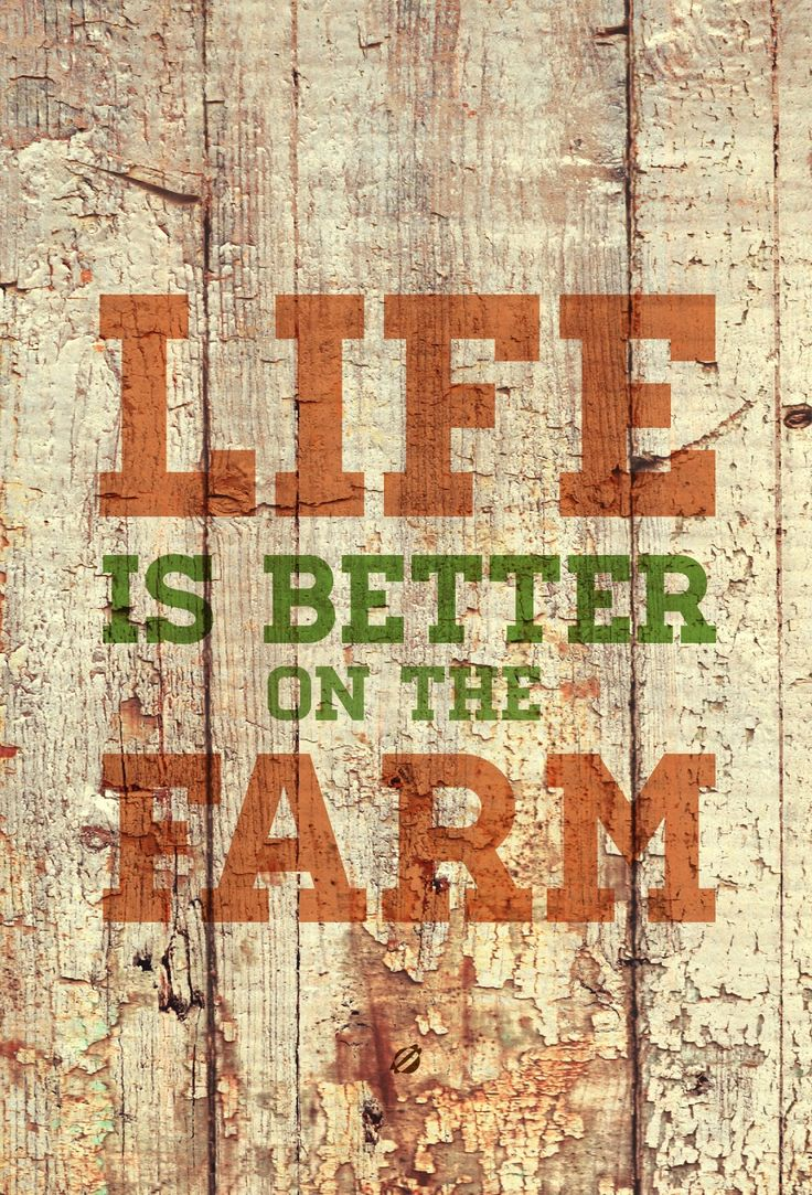 Farming Quotes Best 25 Farm Quotes Ideas On Pinterest  Farmer Quotes Farm Life