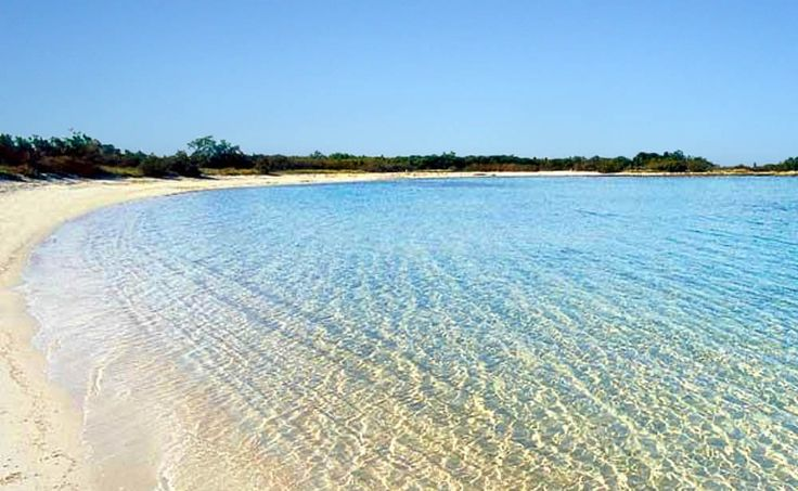 Tha amazing beach of Torre Guaceto near Ostuni, Salento, Italy.