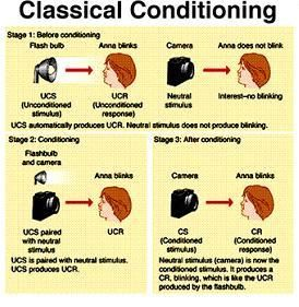 Operant Conditioning: Definition and Educational Implications