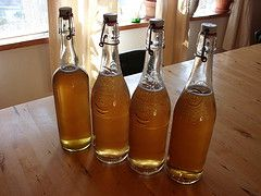 Bottled Raw Kombucha Recipe - I want to add raspberry juice and chia seeds to make my own version of G.T.'s Synergy