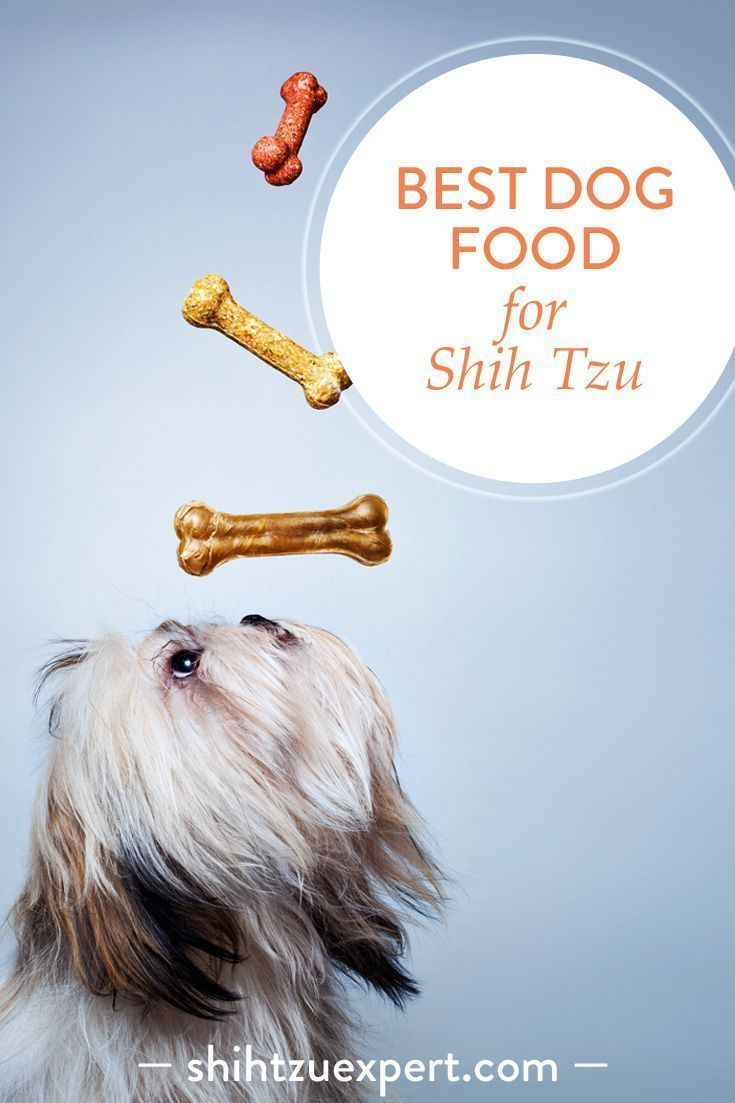Best Dog Food For Shih Tzu Dog Food Recipes Top Rated Dog Food