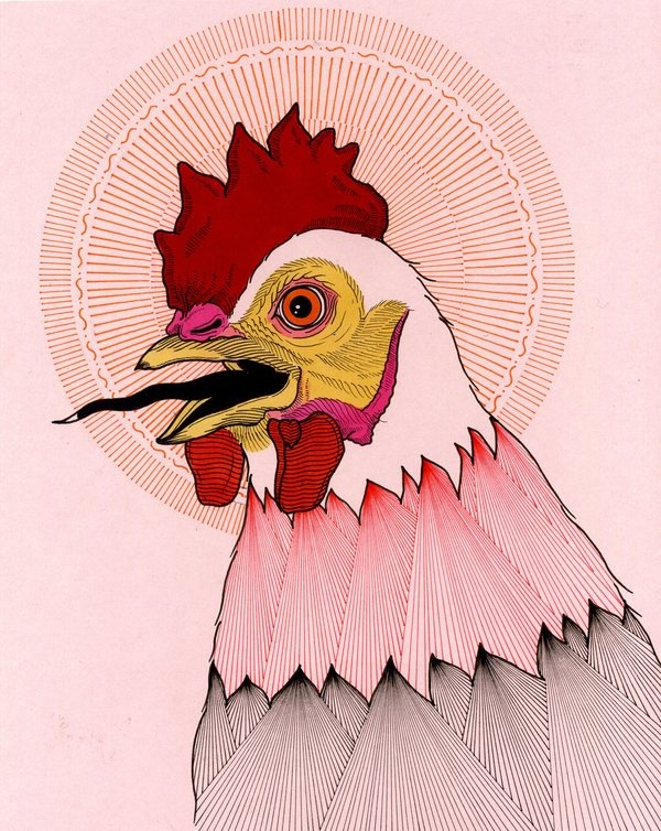 HOME TO ROOST by david cook, via Behance
