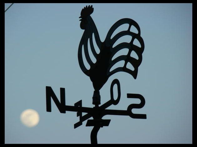 North Wind, Enseignement Girouette, Google Search, Wind Blowing, Résultat Google, Image Search, Roosters Weathervane, D Image Correspondence, Girouette Signaletique