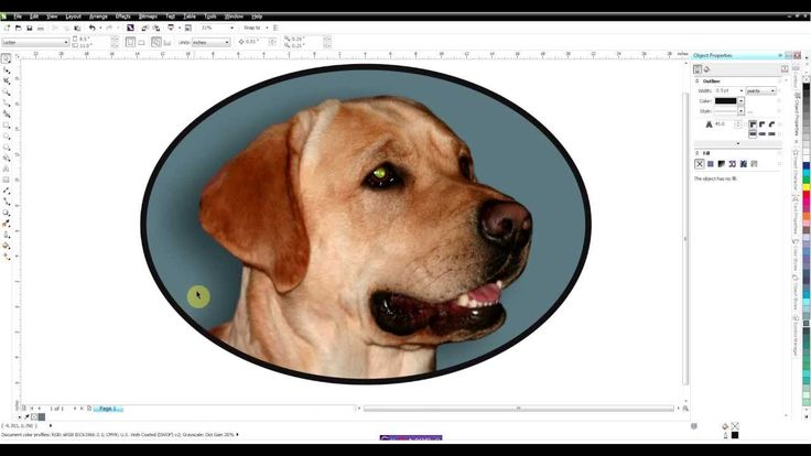 This video was done in Corel X6 but for older versions also. This video shows how to remove a background from a photo. We also use a drop shadow and power cl...