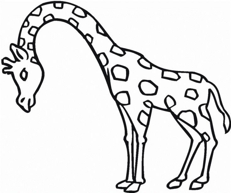 Ausmalbilder Giraffe Ausdrucken Ausmalbilder Ausmalbilder Zum Ausdrucken Ausmalen