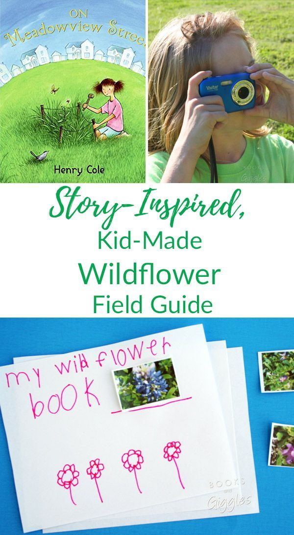 Wildflowers, Kids |Create Your Own Field Guide From a Wildflower Photo Safari