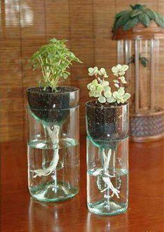 Eine Weinflasche in einen Blumentopf verwandeln? Das geht tatsächlich. Du kannst es komplett selber machen und es ist auch ein ziemlich einfacher Life-Hack. Probier es doch einfach mal aus! Klick einfach auf's Bild um zur Anleitung zu kommen. | unfassbar.es