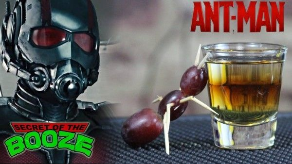Top 25 Ideas About Ant Man Party Ideas On Pinterest Ants