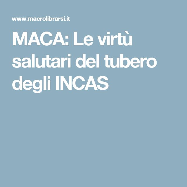 MACA: Le virtù salutari del tubero degli INCAS