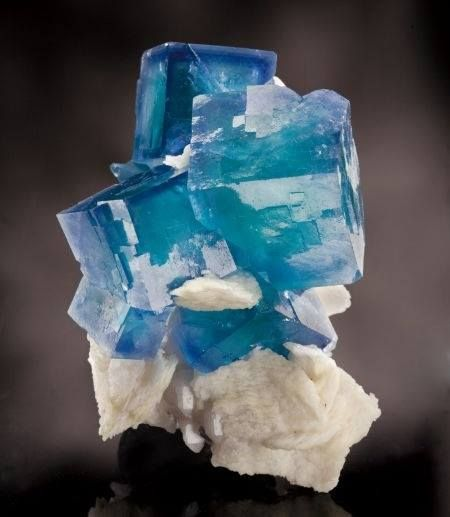 Blue Fluorite ~ Blue fluorite has the quality of protecting the emotions and restoring emotional balance. It is a stone of justice.
