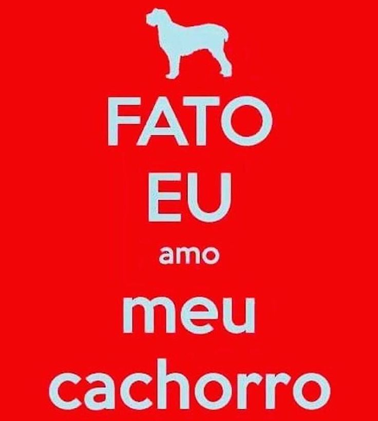 SIMMMM!!❤❤❤ #amoanimais  #filhode4patas  #amocachorro  #cachorro  #cachorroétudodebom  #petmeupet