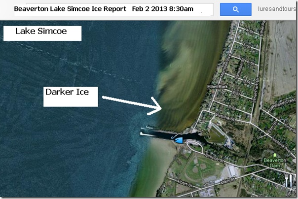 Beaverton Lake Simcoe Ice Report Satellite Image Floyd Hales Fish Huts Feb 2, 2013 8:30 am Check it out!