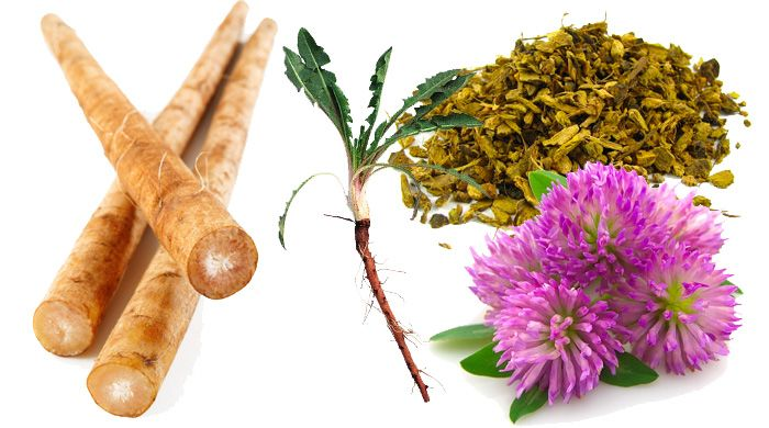 Top Four Liver Detox Herbs – It is Quality Not Quantity