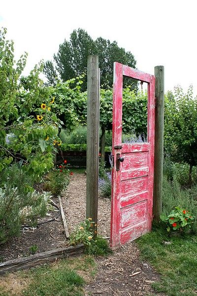 """Repurposed door - have two of em in my shed! Entrance to the garden area. Dog door for pup to get to """"the back"""""""