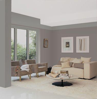 Les 25 meilleures id es de la cat gorie couleurs de - Couleur gris taupe pour salon ...