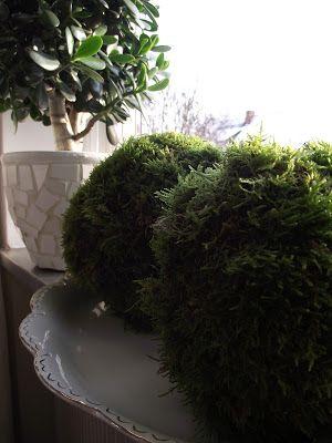 Den gröna trädgården: Mer pyssel med mossa