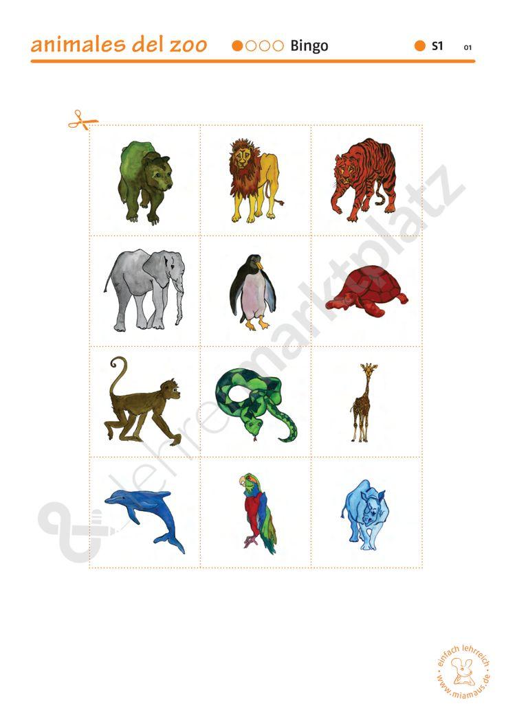 Vokabeltrainer Spanisch: animales del zoo