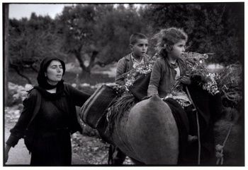 Going home from the fields, Kritsa, Crete, Greece, 1964 - Greek America Foundation; Photograph by Constantine Manos, Magnum Photographer
