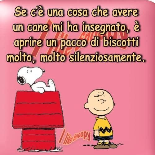 Molto 98 best Snoopy images on Pinterest | Peanuts, Snoopy and Smile CQ88