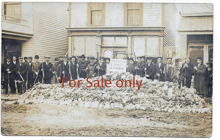 RPPC Real Photo Postcard 723 Rabbit Hunting Kill Kansas C1910 by JerryBurton on Etsy