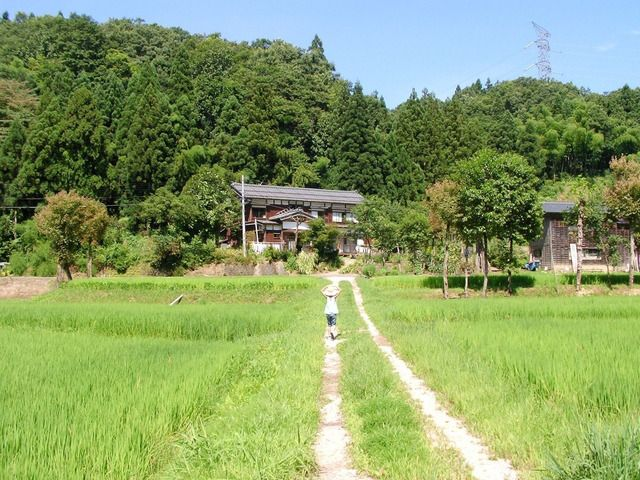 country road in japan