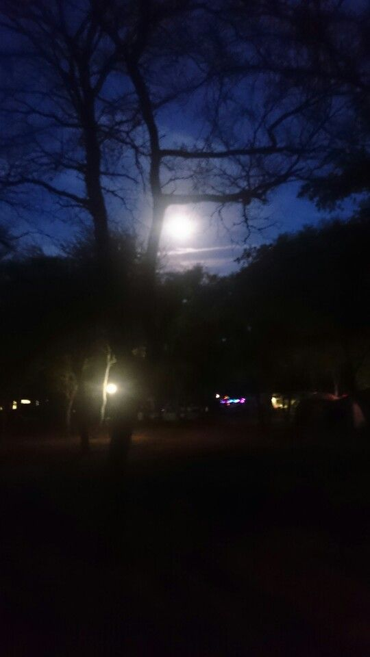 #Christmas in the #African #bushveld. #FullMoon