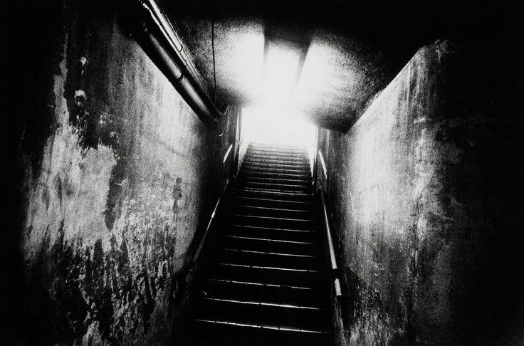 THE PHOTOGRAPHY FILES: Daido Moriyama