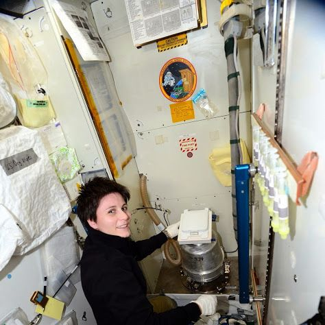 """Astronaut Samantha Cristoforetti: Our solid waste container gets changed out when it's full, typically every 11/12 days. To easily keep track of how long it lasts, we write the day on it. On the wall of the toilet compartment you can see urine tubes and a urine collection bag: we draw urine from the bag into the tubes and then put the tubes in the freezer. When one of us has a 24-hour urine collection, the """"equipment"""" Is typically deployed like that in the toilet cabin."""