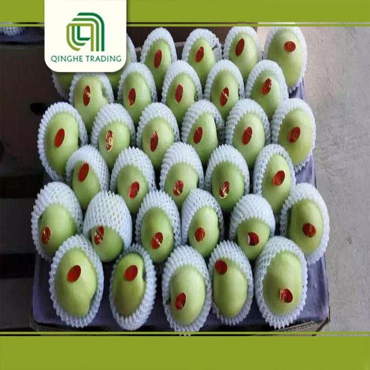 cheap cheap stock apples cheap stock gala apples from china