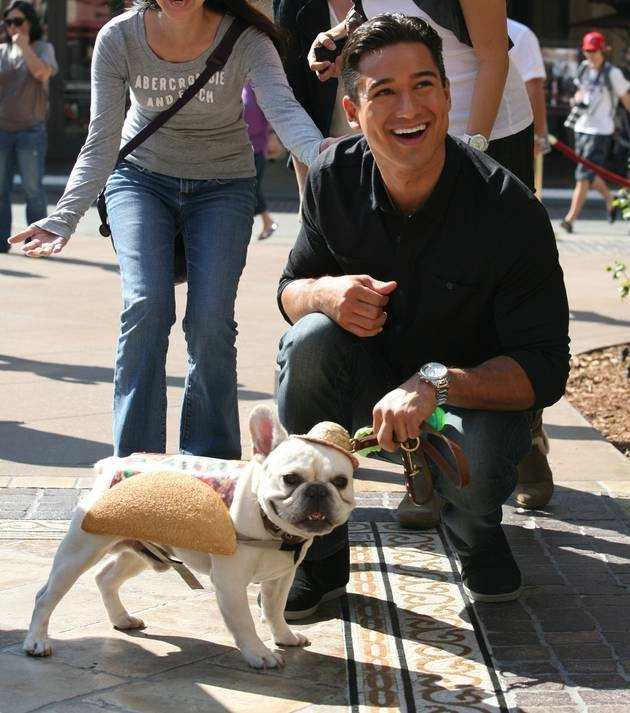 Photo of Mario Lopez & his  Dog Julio César Chavez