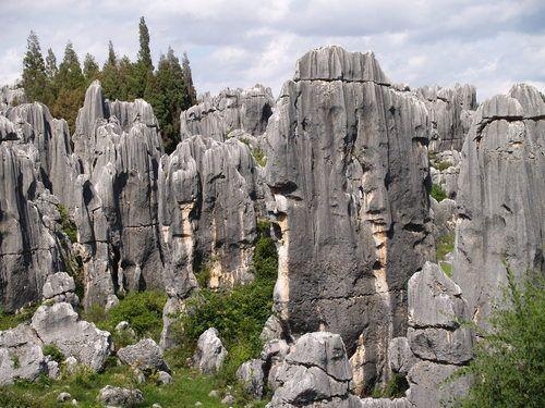 El bosque de piedra en Shilin (China) La naturaleza en piedra