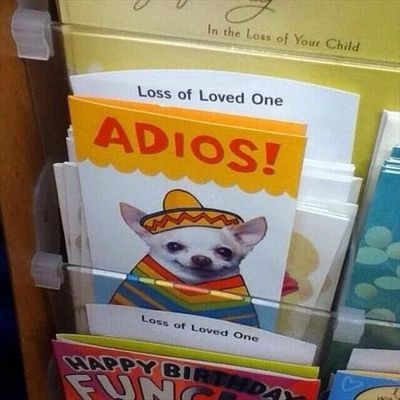 """Laughing so hard rn. Just imaging like a really high pitched kind of Mexican voice just going """"Adios!"""" With like a little wave"""