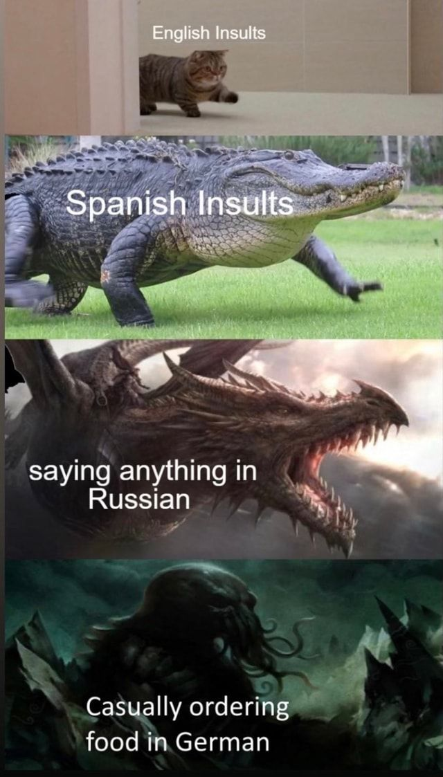 English Insults Spanish Insults Saying Anything In Russian Casually Ordering Food In German Ifunny Really Funny Memes English Insults Funny Pictures